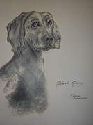 Charcoal Dog Drawing Drawings Posters - Weimaraner Poster by Paula Rountree Bischoff