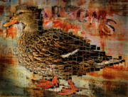 Wildlife Pyrography Posters - Weird Duck Poster by Cindi Finley Mintie
