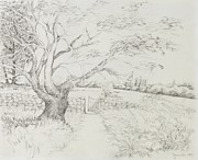 Apple Tree Drawings - Welcome Gate by Jean Moule