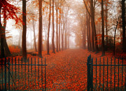 Herfst Posters - Welcome Poster by Photodream Art