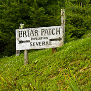 Oneal Posters - Welcome to Briar Patch Poster by JT ONeal