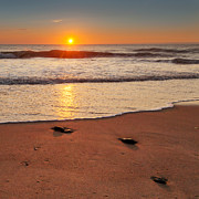 Atlantic Ocean Prints - Wellfleet Sunrise Square Print by Bill  Wakeley