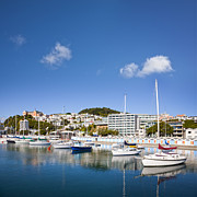 Cityscape Photos - Wellington Oriental Bay Marina New Zealand by Colin and Linda McKie