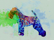 Quite Dog Prints - Welsh Terrier Watercolor Print by Irina  March