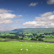 North Yorkshire Prints - Wensleydale Yorkshire Dales England Print by Colin and Linda McKie