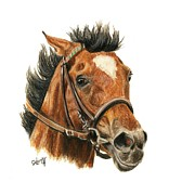 Thoroughbred Horse Posters - Went The Day Well Poster by Pat DeLong