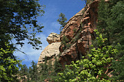 Rock Formation Paintings - West Fork Trail by Ellen Henneke