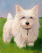 Pup Pastels Framed Prints - West Highland White Terrier Framed Print by Jacqueline Barden