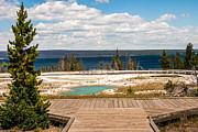 Sue Smith Prints - West Thumb Geyser Basin Print by Sue Smith
