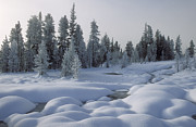 Pillows Photos - West Thumb Snow Pillows by Sandra Bronstein