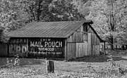 Chewing Tobacco Prints - West Virginia Barn monchrome Print by Steve Harrington