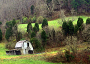 Lydia Holly - West Virginia Mountain...