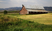 West Country Prints - Western Barn Montana Print by Edward Fielding