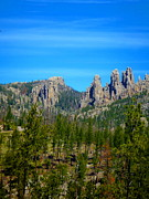Needles Highway Framed Prints - Western Needles Scene Framed Print by Ellen Bollinger