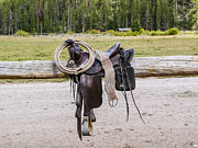 Sue Smith - Western Saddle and Gear