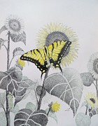 Arizona Artist Originals - Western Tiger Swallowtail and Sunflower by Tammie Temple