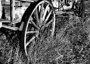 Wagon Wheels Photos - Western Wagon Wheels by Marion Muhm