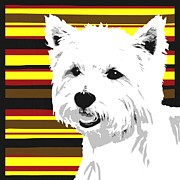 Puppies Digital Art Metal Prints - Westie Metal Print by Cindy Edwards