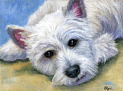 West Highland Terriers Posters - Westie Poster by Hope Lane