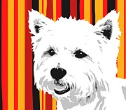 Puppies Digital Art Prints - Westie With Stripes Print by Cindy Edwards