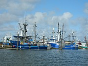 Neurotic Images Photography Prints - Westport Fishing Boats Print by Chalet Roome-Rigdon