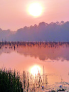 Southern Alabama Framed Prints - Wetlands Sunrise Framed Print by JC Findley