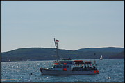 Whale Watching At Bar Harbor Print by  Photographic Art and Design by Dora Sofia Caputo