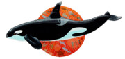 Dolphins Prints - Whale Watching Print by David  Chapple