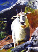 Mountain Goat Painting Prints - What are you doing up here? Print by Daniel Grant