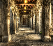 Walkway Metal Prints - What Lies Beyond Metal Print by Scott Norris