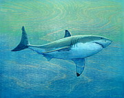 Sharks Painting Posters - What Lurks Below Poster by Nathan Ledyard