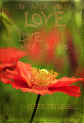 Encouragement Posters - What you Love Poster by Darren Fisher