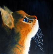 Feline Paintings - Whats Up There by Wendi Evans