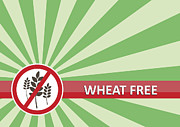 Tim Hester - Wheat Free Banner