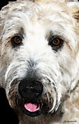 Buy Digital Art - Wheaten Terrier - Happy Dog by Sharon Cummings