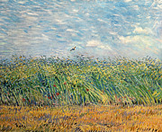 Post-impressionism Posters - Wheatfield with Lark Poster by Vincent van Gogh