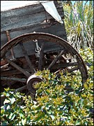Western Art Digital Art Framed Prints - Wheels In The Garden Framed Print by Glenn McCarthy Art and Photography