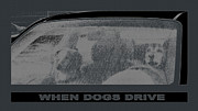 Angela Wile - When Dogs Drive