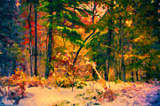 Asheville Digital Art - When Fall Becomes Winter by John Haldane
