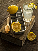 Lemon Photos - When Life Gives You Lemons... by Edward Fielding