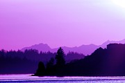 South Puget Sound Prints - When the Deep Purple Falls Print by Chris Anderson