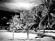 Inverse Prints - When the Veil Tore Open Infrared Extreme Print by Heather Kirk