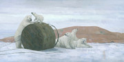 Polar Bears Paintings - When Worlds Collide by Steve Mitchell