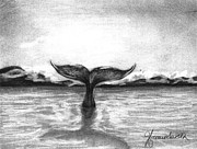 Whale Drawings Metal Prints - Where can I go Metal Print by J Ferwerda