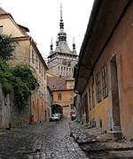 Ion vincent DAnu - Where Dracula Was Born