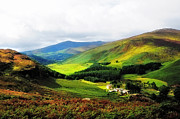 Shades Of Green Prints - Where is Soul Flying. Wicklow Mountains. Ireland Print by Jenny Rainbow