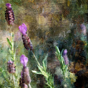 Purples Digital Art - Where the Bees Art by Karen  Burns