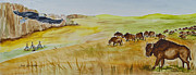Canyons Paintings - Where The Buffalo Roam by Janis Lee Colon