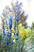 Garden Scene Drawings Posters - Where The Delphiniums Bloom Poster by Carol Wisniewski