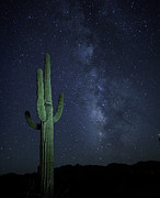 Alex McClure - Where the Saguaros meet...